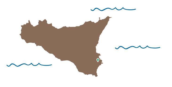 img-sicilia-oliva3