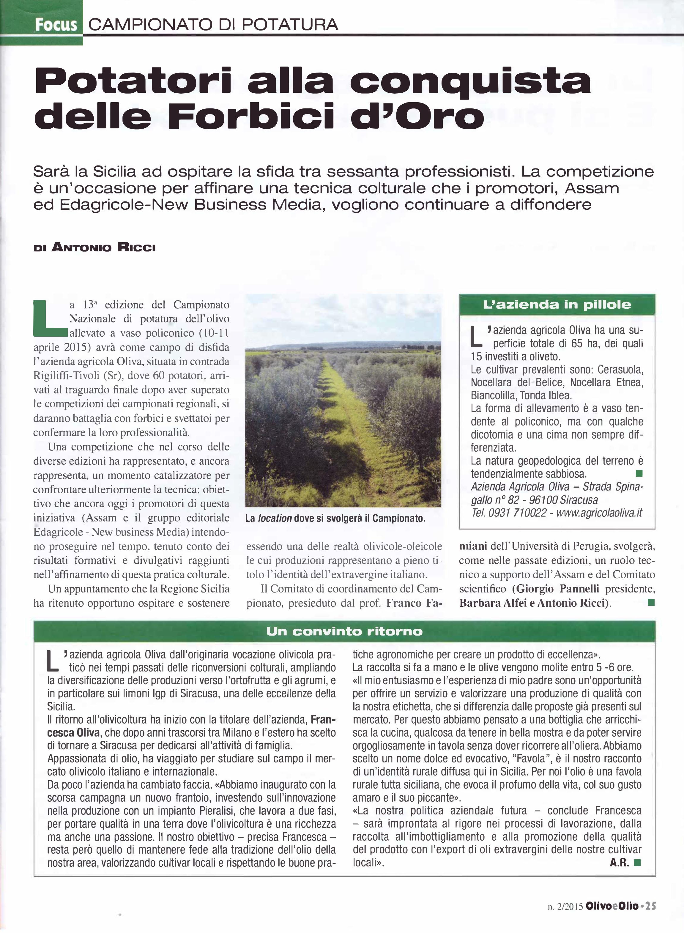 Articolo-OLIVO-E-OLIO