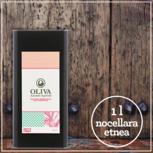 olio-extra-vergine-oliva-nocellara-favola-1l